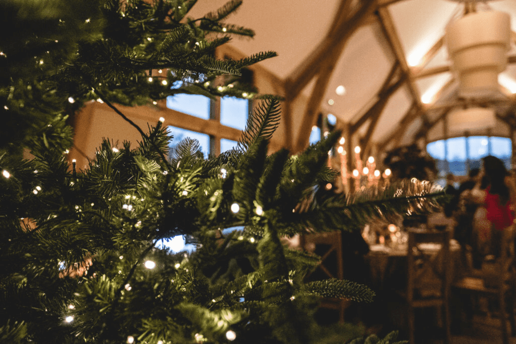 A christmas winter wedding in the barn at Tower Hill Barns